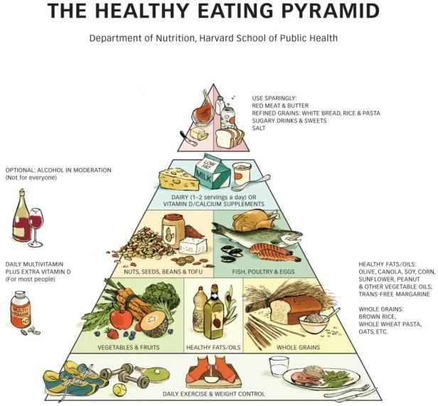 04-la-piramide-de-harvard